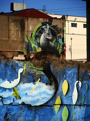 (que despierte el Sur) (Felipe Smides) Tags: chile streetart libertad mural sur animales resistencia valdivia despertar muralismo latinoamérica quarzo despierte wallmapu smides felipesmides quarzomural