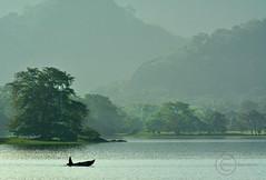 kandalama lake at morn (mithra srilanka) Tags: srilanka boatman kandalama dambulla amayalakehotel lakeinmorn