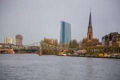 Frankfurt am Main: Blick ber den Main (kevin.hackert) Tags: hessen frankfurt main kirche frankfurtammain metropole hochhaus ffm ezb 069 rheinmain dreiknigskirche europischezentralbank eisernersteg