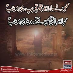 15                .... (ShiiteMedia) Tags: pakistan 15   shiite             shianews     shiagenocide shiakilling   shiitemedia shiapakistan  mediashiitenews        shia