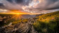 Mt Hay Sunset (scotty-70) Tags: sunset mountain sony voigtlander australia bluemountains nsw 15mm a7 goldenhour leura heliar lenstagger mthay