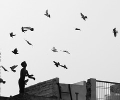 From the holy Varanasi, I here send pigeons of peace to all over the world (ybiberman) Tags: roof boy portrait bw india kite candid pigeons earlymorning streetphotography silouette varanasi