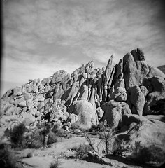 Ryan Ranch, No. 2 (a.k.a. Flash) Tags: 120 film landscape holga ruins december scan joshuatreenationalpark 2015 ryanranch