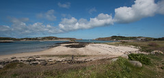 IMG_6578 (Chris Wood 1954) Tags: tresco islesofscilly