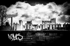 Guinness factory (HaydnH) Tags: street ireland people urban blackandwhite dublin monochrome canon landscape graffiti guinness april luas urbanscape 70d haydnhammerton