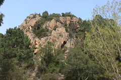 The Valley of the Solenzara River (demeeschter) Tags: trees france mountains nature forest river landscape rocks corse corsica canyon gorge solenzara