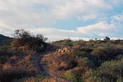 Trail cut (ADMurr) Tags: leica light film zeiss 50mm fuji trail 200 late m4 planar chapparel