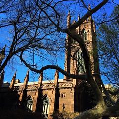 5th Avenue NYC (Christian Montone) Tags: nyc newyorkcity newyork church spring manhattan 5thavenue montone greenwichvillage christianmontone