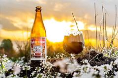 DSC_6844 (vermut22) Tags: b beer bottle beers brewery birra piwo biere beerme beertime browar butelka