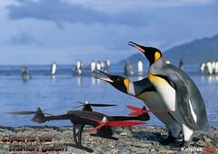 drone.kameral-byk-oyuncak-model (kelebekhobi) Tags: model drone oyuncak byk kameral