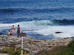 Maroubra, New South Wales (raels2013) Tags: newsouthwales maroubra