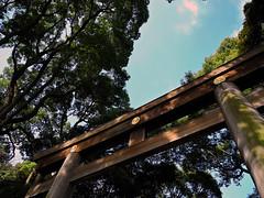 DSCN2166 (hiroshi.nakatani) Tags: japan tokyo nikon shinto harajyuku newer p7000