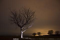 Slo. (jm_alcon) Tags: light sky espaa color planta luz sol night canon de arbol eos noche colores nostalgia cielo rbol nocturna invierno puesta aire libre teruel cordillera airelibre aragn 600d ibrica eos600d