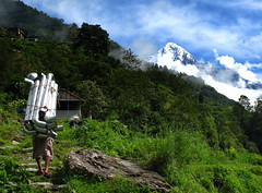 Sherpa (Py All) Tags: nepal mountain snow nature montagne trekking trek outside climb asia climbing asie neige himalaya pokhara sherpa extrieur annapurna npal randonne grimper ghandruk