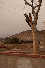 DSC_2988 (DanielCleggArts) Tags: california usa digital america nikon lasvegas nevada snapshot roadtrip americana deathvalley ridgecrest