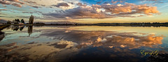 Flooded Field Reflection-Edit.jpg (Eye of G Photography) Tags: sunset usa reflection water pond places northamerica washingtonstate sunsetsunrise skagitvalley skyclouds