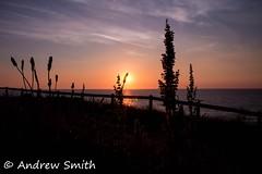 The grass good night (bindysmith) Tags: ocean sunset sea summer orange sun shells seascape grass clouds landscape sand warm cornwall waves orb atlantic sunburst coastline seashore afterglow kernow perranporth seazone