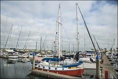 Scarborough Newport Marina-1= (Sheba_Also 11,000,000 + Views) Tags: marina newport scarborough