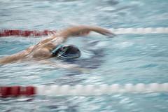 Week 3 of 52_Break the Rules (sumoetx) Tags: school 3 water sport swimming swim drag high team nikon break slow action indoor rules saltlakecity shutter d750 week 70300mm panning 52 aports sumoetx howardjackman wjswim