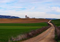 Caminos (Jesus_l) Tags: espaa europa valladolid camposdecastilla villabaez jessl
