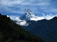 In the Annapurnas (Py All) Tags: nepal mountain snow nature montagne trekking trek outside asia peak asie neige himalaya pokhara extrieur annapurna npal randonne sommet ghandruk