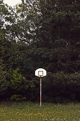 3 Points! (C_MC_FL) Tags: wood old trees game green abandoned grass basketball sport forest canon photography eos fotografie basket alt decay wiese gras grn hayfield tamron wald bume spiel verlassen hoob verfall grasland 18270 basketballkorb 60d b008