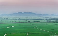 Amanece... (Elena Savoy) Tags: mountain nature sunrise river landscape rice foggy delta vietnam fields mekong sud plaine amanacer