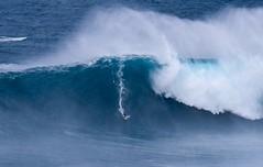 #peahi #brockswell #niccoloporcella #eddiewent #xxl #xxlbigwaveawards #wsl #surf #surfphotography #maui #hawaii (Run amuck) Tags: hawaii surf maui xxl peahi surfphotography wsl xxlbigwaveawards niccoloporcella eddiewent brockswell