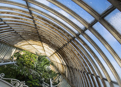 Under Glass (stopdead2012) Tags: roof london glass kew gardens angle greenhouse