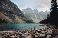 on the edge of lake moraine (manyfires) Tags: lake canada mountains film analog forest 35mm landscape outdoors honeymoon logs nikonf100 alberta banffnationalpark lakemoraine