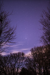 B l e s s e d T h e N i g h t S k y (Chris Robinson Photography) Tags: trees light clouds stars outdoors cool planet nightsky seconds starsystem longexposures bight 15secondexposure fromearth sigma35mmf14 stargassing