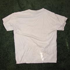 t shirt 21b (seanduckmusic) Tags: tshirts blouses witsendep