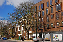 Chestnut Tree (Gaz-zee-boh) Tags: tree london nikon holloway islington architecure chestnuttree n7 newdevelopment innerlondon d40 environmentalimpact privatehousing tufnellparkrd leafylondon almoostanything formersiteofcouncilhousingofficeandodeoncinemacarpark copperfascia
