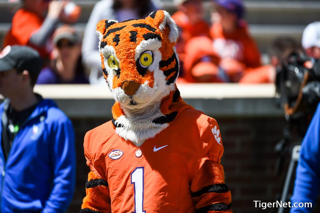 Clemson Photos: 2016, Football, The  Tiger