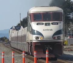 Amtrak 469 F59PHI (zargoman) Tags: railroad travel train engine rail amtrak transportation cascades locomotive passenger edmonds emd f59phi emdf59phi
