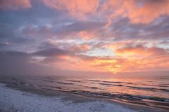 Sunrise (Infomastern) Tags: winter sea cold water vinter frost rime vatten hav rimfrost kallt skateholm
