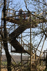 Sky Tower (Wildlife Terry) Tags: naturereserve silverdale aonb rspb leightonmoss sssi wildlifenatureamateurphotography