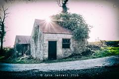 Abandoned (Garr8) Tags: trees ireland sunlight building abandoned overgrown open shed blocks derelict pathway tinroof ulster starlike fermanagh enniskillen johngarrett discoverireland garvary garr8 mullanaskearoad