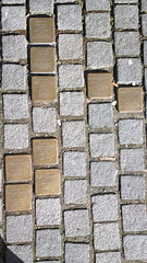 Bronze cobblestones in front of a door to remember victims of the Holocaust (hugovk) Tags: cameraphone door bronze germany march nokia holocaust spring remember front cobblestones hvk konstanz constance victims badenwurttemberg carlzeiss 2016 808 kevt geo:country=germany hugovk camera:make=nokia pureview exif:flash=offdidnotfire exif:exposure=1100 exif:aperture=24 nokia808pureview exif:orientation=horizontalnormal camera:model=808pureview uploaded:by=email exif:exposurebias=0 exif:focallength=80mm exif:isospeed=80 geo:county=constance geo:locality=konstanz geo:region=badenwurttemberg bronzecobblestonesinfrontofadoortoremembervictimsoftheholocaust meta:exif=1461767066
