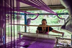 Weaver 7607 (Ursula in Aus - Away) Tags: thailand thep maehongson