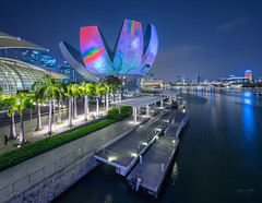 Loving World (bing dun (nitewalk)) Tags: marina bay singapore esplanade cbd helix sands mbs 2016 ilight artsciencemuseum