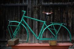 Painting: done (RAL 6000) (Jolie Rouge Cycles - Julien Fritsch - Chambé) Tags: bike handmade framework vélo handbuild