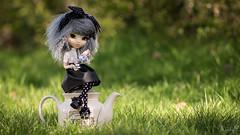 It's always tea time! (MintyP.) Tags: 6 animal photography eyes doll time tea alice sony m wig mohair groove pullip minty wonderland rs paja regen melba regeneration nex obitsu mintyp