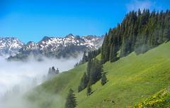 Auf dem Weg zum Arvigrat (afw | ph[o]to) Tags: mountain alps fog landscape schweiz switzerland nebel alpen landschaft 2010wirzweli