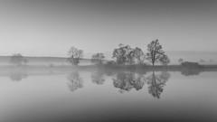 Countryside IV (Jaques10000) Tags: trees monochrome reflections landscape blackwhite nikon silence landschaft brandenburg havelland d5100