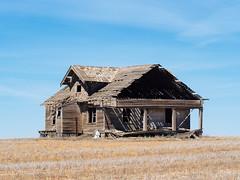 Something's Missing... (John Westrock) Tags: house abandoned rural bluesky odessa pacificnorthwest washingtonstate farmfield olympusomdem5 olympusmzuikoed75mmf18