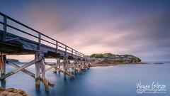 Bare Island, La Perouse, Sydney (wgphotographic) Tags: sydney bareisland