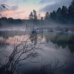 Pond at dawn (Mustekala5) Tags: red cloud mist silhouette fog clouds landscape ma dawn pond branches brush gr bushes ricoh chesterfield lifting