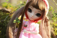 berry girl (e f i c h u ) Tags: brown spring eyes doll wig pullip brunette coolcat ins obitsu eyechips ddalgi leekeworld rewigged rechipped sbhm mistymisty efichu