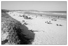 summer afternoon, Sydney 2016  #277 (lynnb's snaps) Tags: ocean ltm summer bw film beach coast sand kodak sydney sunbathers 2016 bw400cn leicaiiic cv35mmf25ltm
